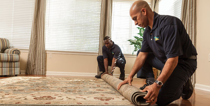 Rug & Carpet Cleaning in Rockland County, NY