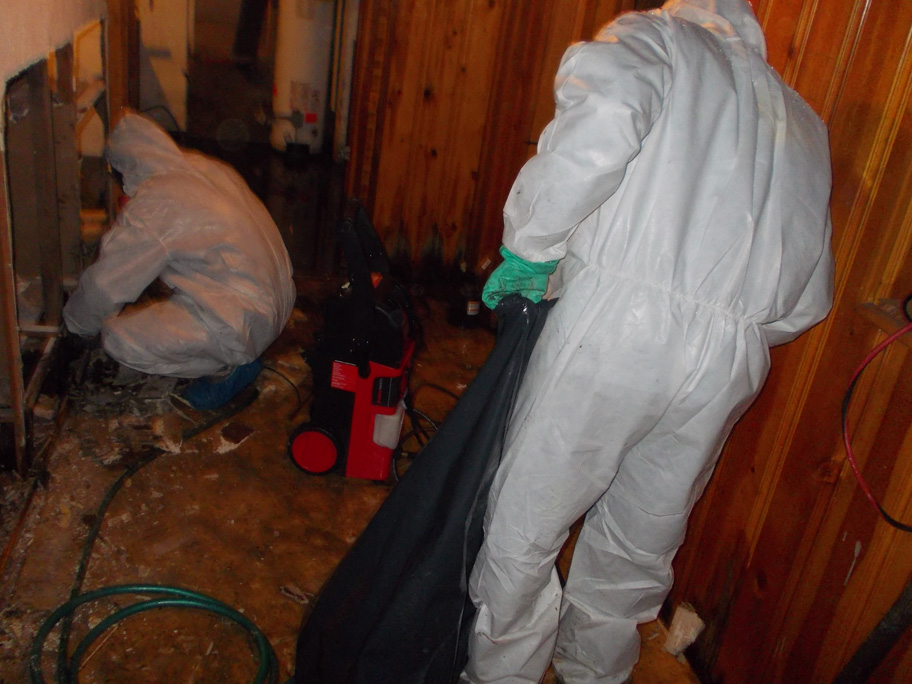 mold removal Bel Air, Pikeville, Jarrettsville MD