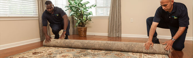 ServiceMaster residential carpet cleaning Wisconsin